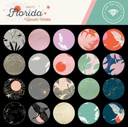 FLORIDA BY SARAH WATTS